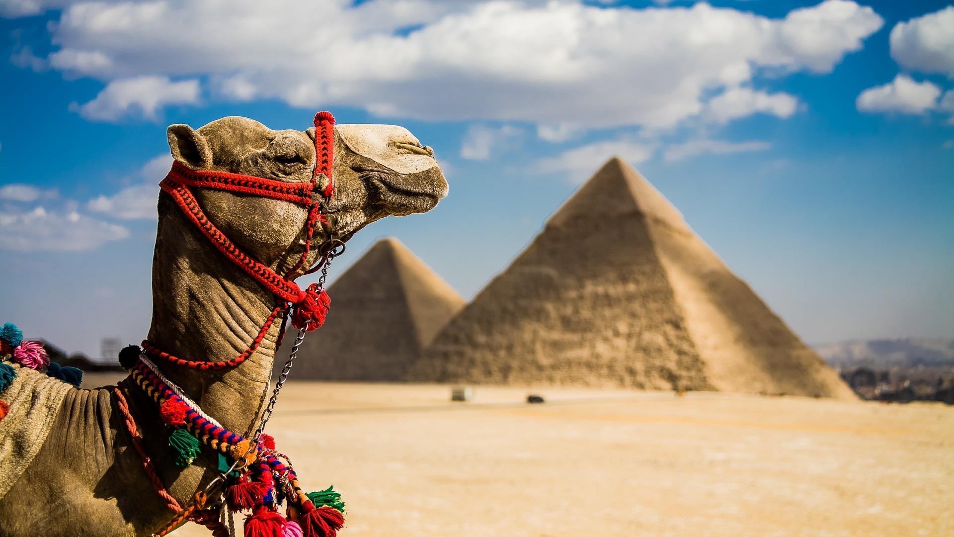 Египет в апреле, отдых, отзывы, цены
