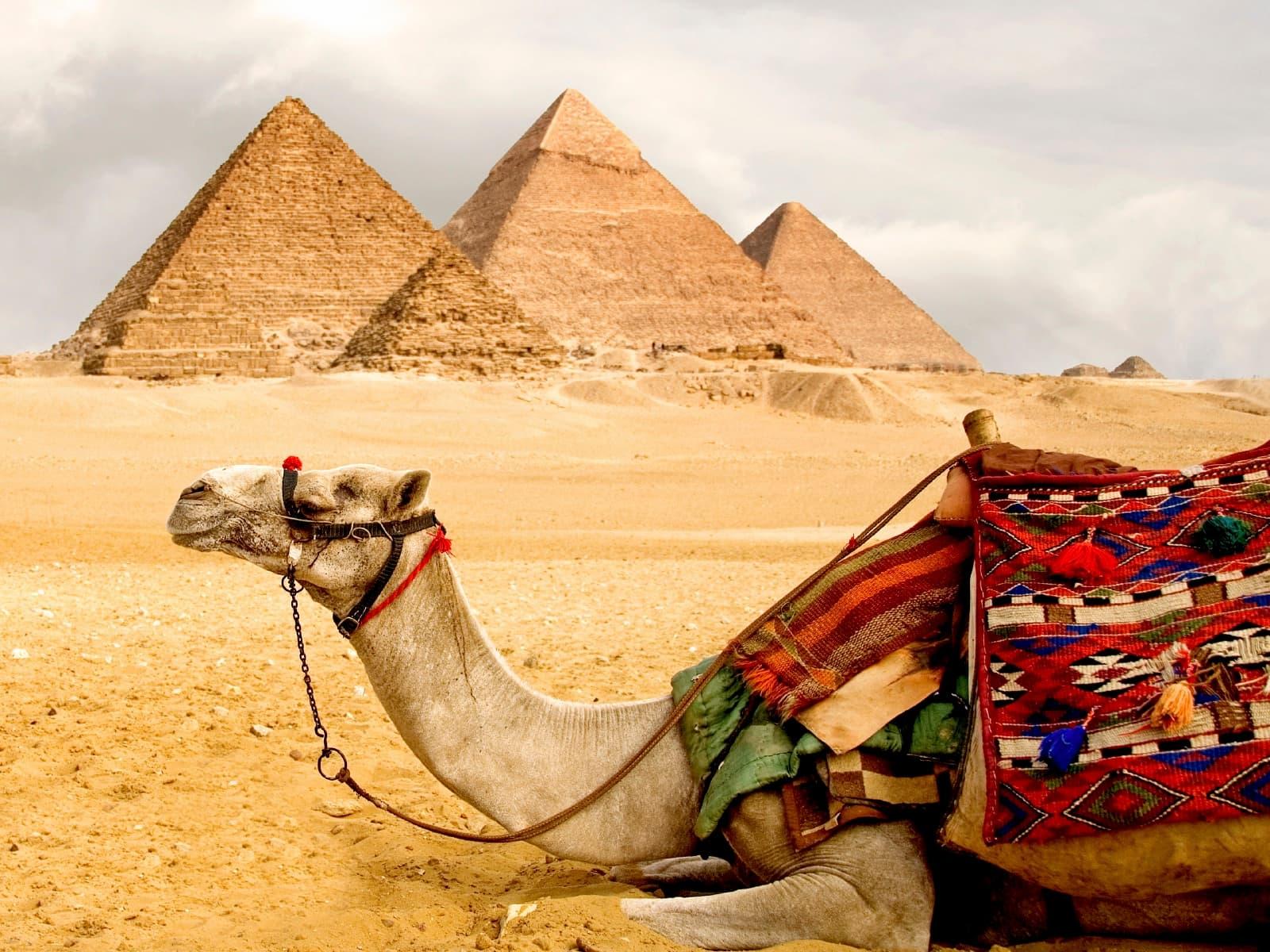 Отдых в Египте в июле, лучшие курорты, советы