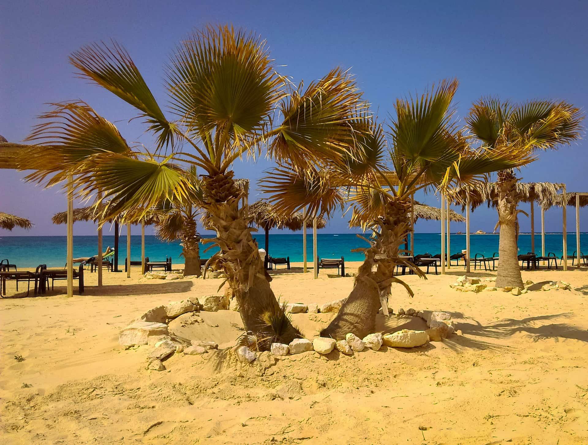 Температура воздуха в Египте в июле