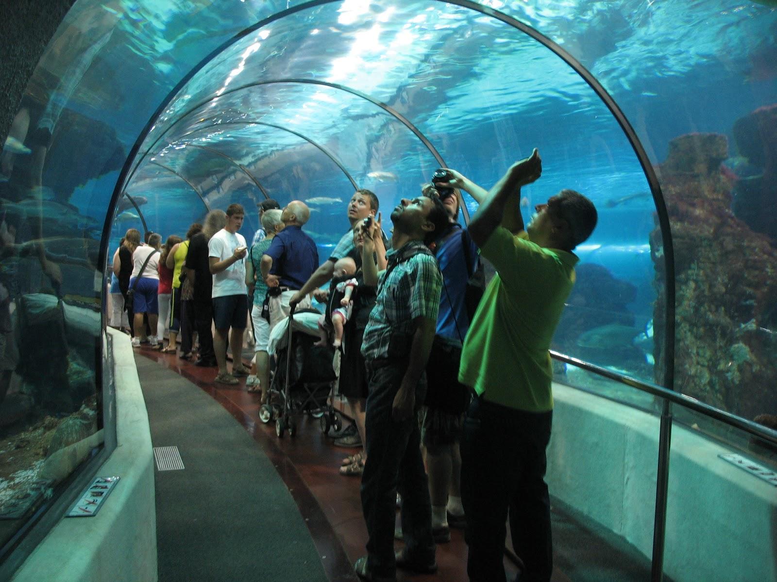 Барселона с детьми – ТОП-20 подходящих мест для посещения