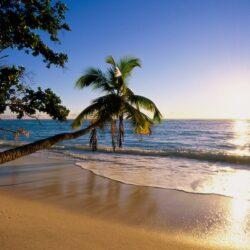 Отдых на Гоа в июне: испытание или приключение?