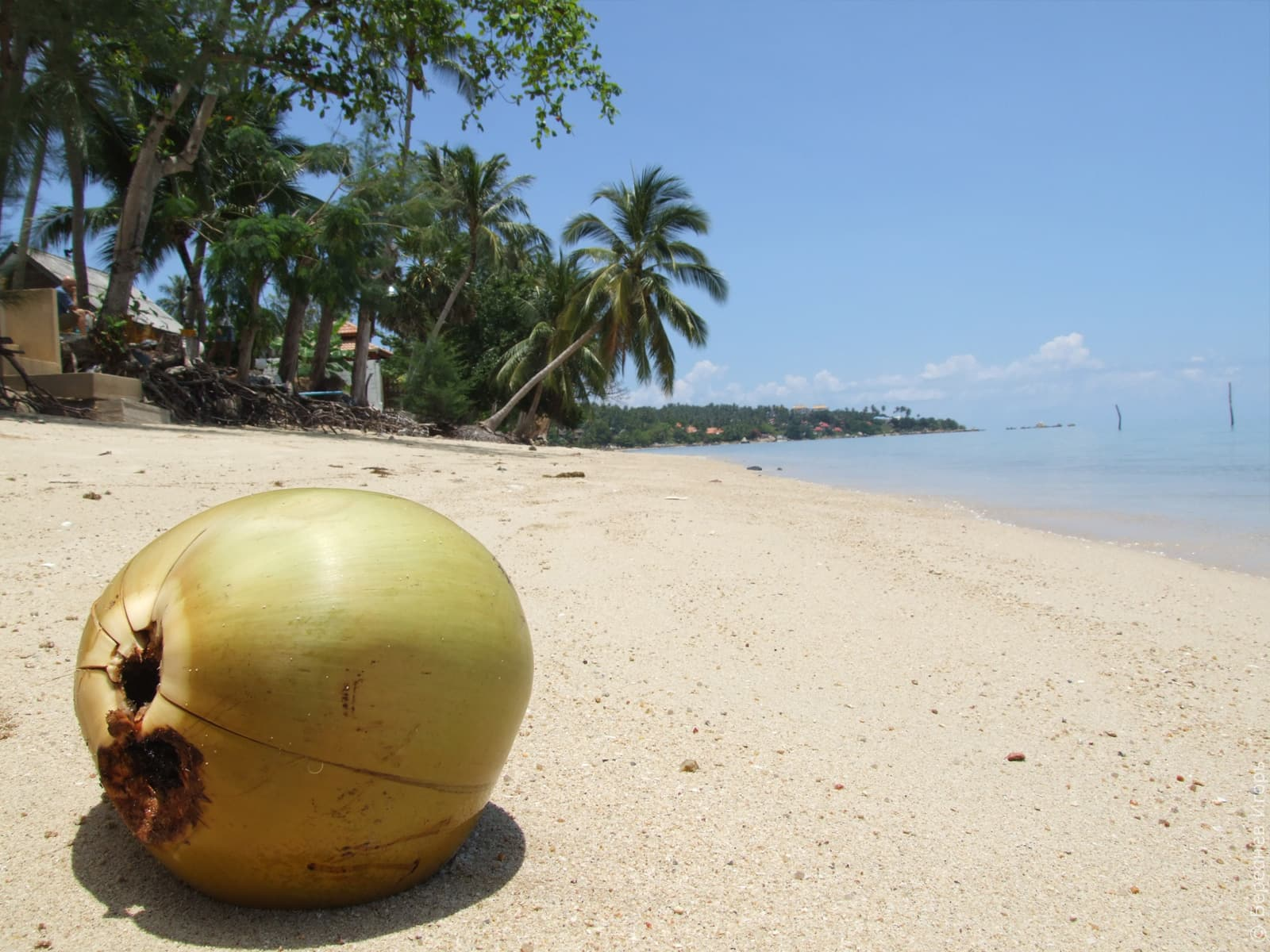 Отдых в Таиланде самостоятельно, пошаговый план