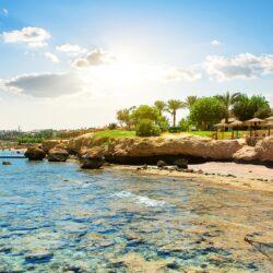 Стоит ли ехать в Египет в феврале?