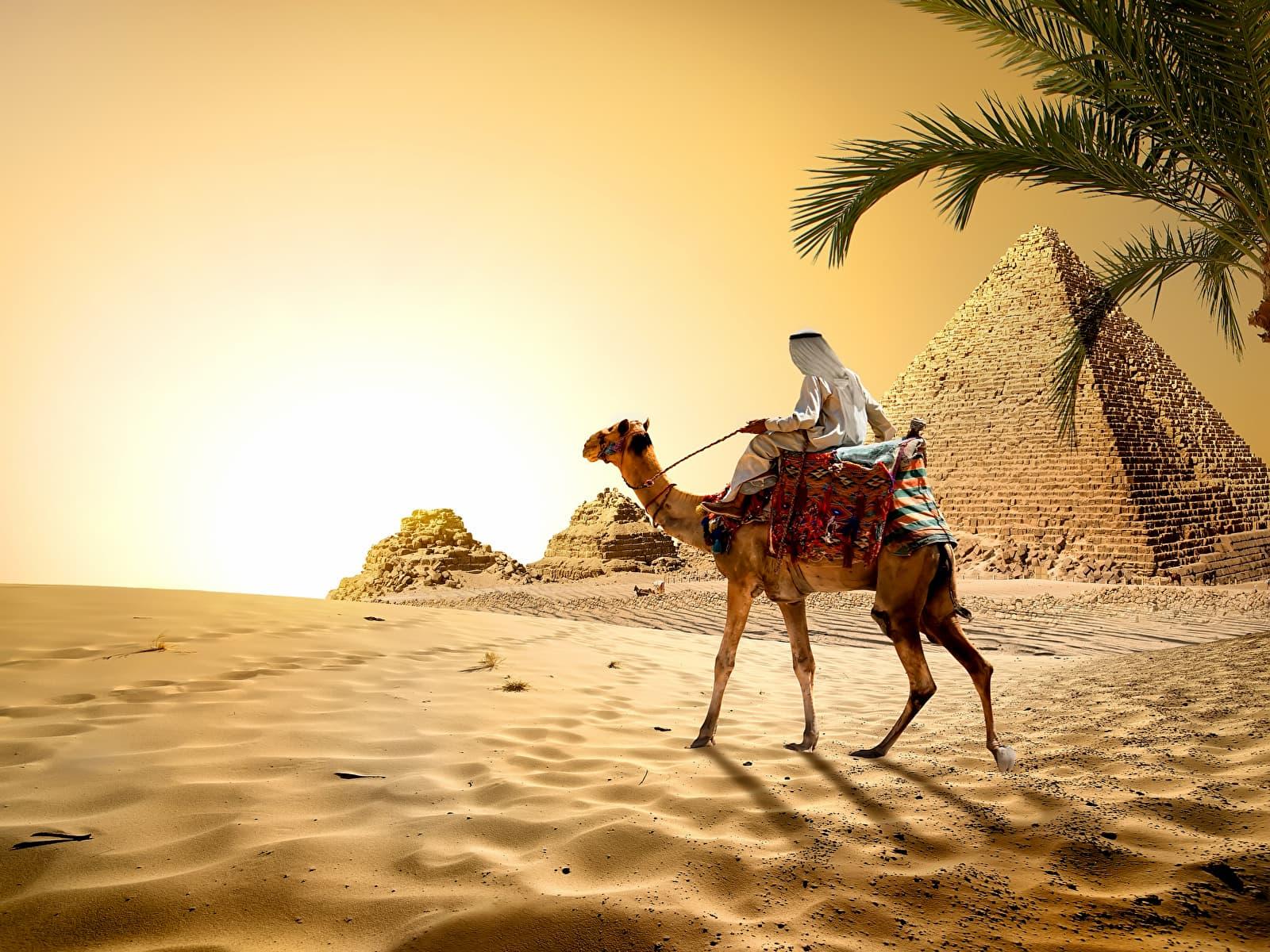 Отдых в Египте в сентябре