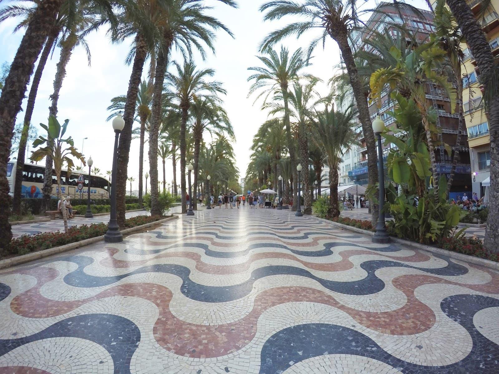 5 способов, как добраться из города или аэропорта Аликанте в Бенидорм